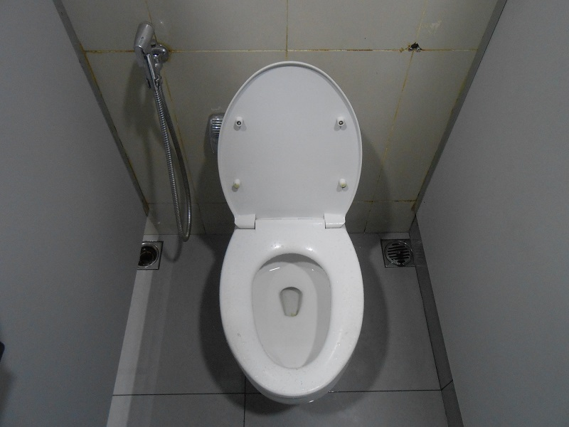 Pooping In Indonesia: A How-To Toilet Guide - Two Fish Traveling